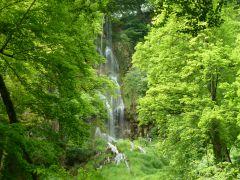 Uracher Wasserfall im Frühsommer
