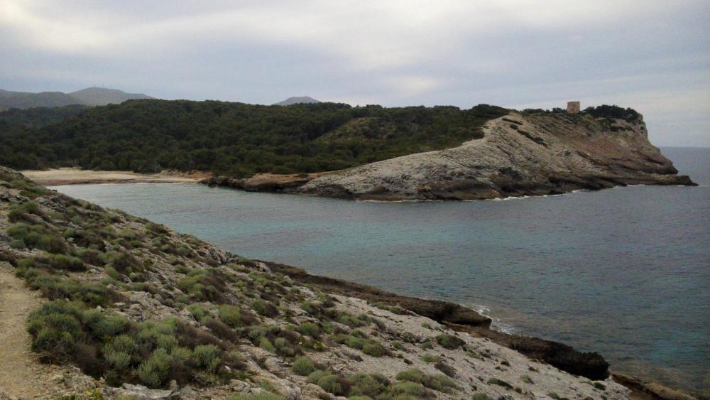 Mallorca mit Werner 2016 und weiteres (31 von 106).jpg