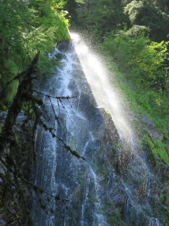 montjwaldwasser.jpg
