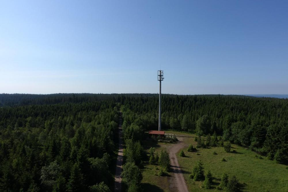 Blick vom Holohturm