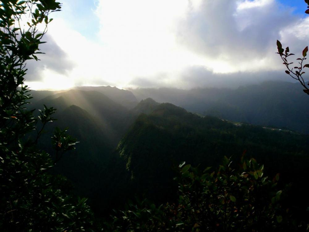 5a627f0b45e32_Madeira2018(12).thumb.jpg.c24ea8788846e9cc420f37b0a04bedc2.jpg