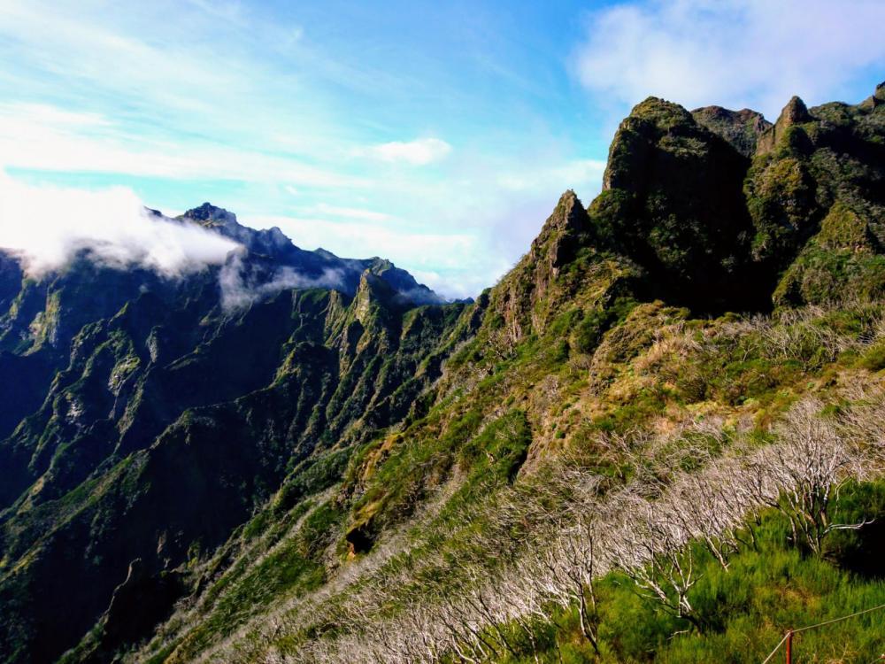 Madeira 2018 (63).jpg