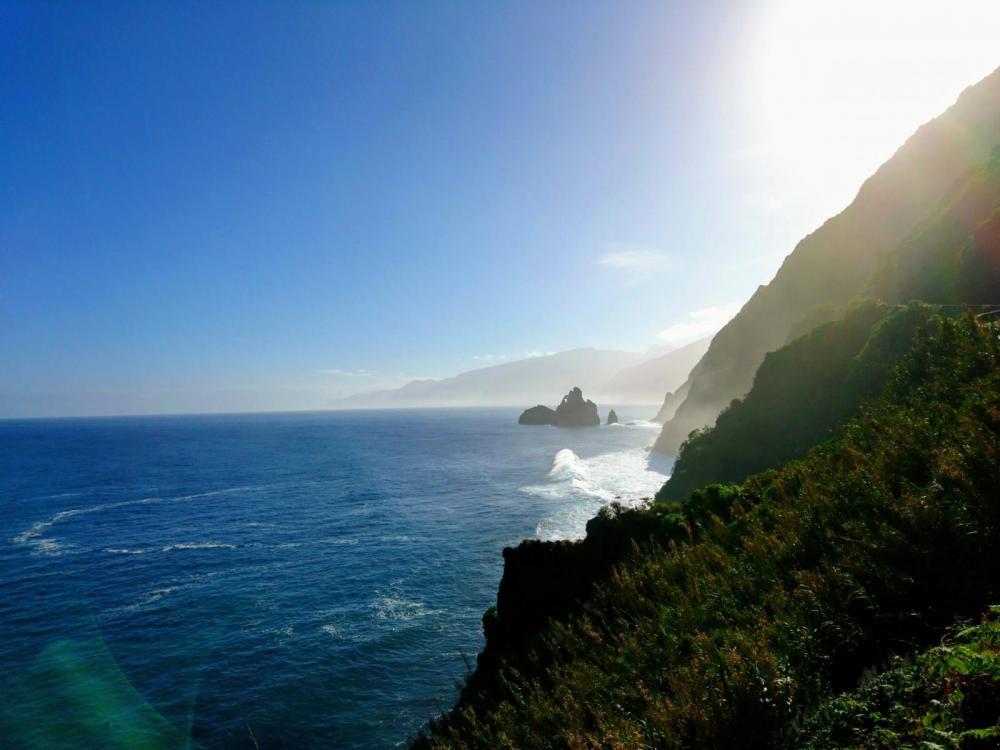 5a628337c7c9d_Madeira2018(99).thumb.jpg.fa8fe1630cb83d9519b12bc0e5376100.jpg